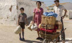西班牙选送《痛苦与荣耀》角逐奥斯卡