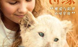 """三年拍摄真狮出镜  《白狮奇缘》邀您9月20日一起""""撸狮""""!"""
