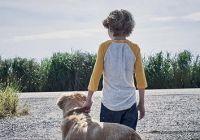 Netflix发布恐怖彩神8ios官方-彩神8ios下载《高草魅声》中字预告