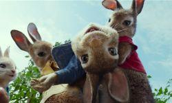 真人CG电影《比得兔2》宣布改档