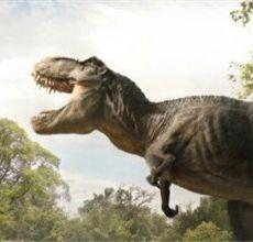《侏罗纪世界3》明年开机 斯皮尔伯格将任制片