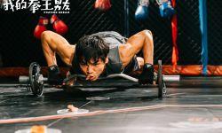 《我的拳王男友》心动版海报预告曝光  向佐演绎杜琪峯版有型暖男