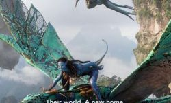 电影《阿凡达》将于11月12日登陆迪士尼流媒体平台Disney+