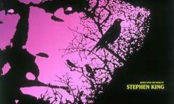 米高梅电影公司将改编史蒂芬·金小说《黑暗的另一半》