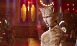 """""""霉霉""""泰勒·斯威夫特新片《猫》口碑解禁 ,分数评价惨不忍睹"""