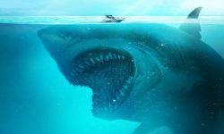 """神秘古城遗址?;刂?,《鲨海逃生》曝""""猛鲨来袭""""预告"""
