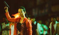 烂番茄公布2019年十佳电影 《江湖儿女》位列第九
