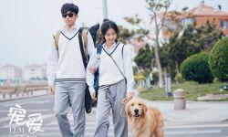《宠爱》曝新特辑,吴磊张子枫诠释最美友情