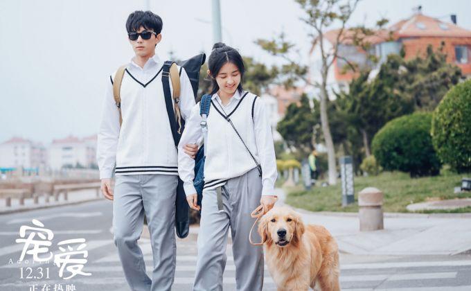 《寵愛》曝新特輯,吳磊張子楓詮釋最美友情