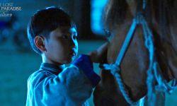 于月仙导演处女作《阳光下的少年》好评如潮