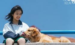 """张子枫现身河南艺考现场,给偶遇网友写""""加油"""""""