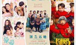 从《宠爱》到《囧妈》:中国式亲情治愈大银幕