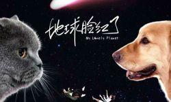 张可盈献唱 《地球脸红了》片头曲,宠物系爱情即将来袭
