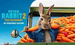 受肺炎疫情影响 《比得兔2》欧美推迟上映