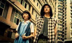 香港电影导演协会奖揭晓  《少年的你》揽获三项大奖