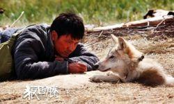 《狼图腾》《战狼2》老片复映 成影城复工主要选择