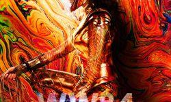 DC新片《神奇女侠2》北美上映改档  将于8月14日上映