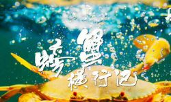 美食探索纪录片《风味人间》第二季 定档4月26日