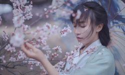 李子柒海外粉丝破千万背后,是否代表粉丝经济回归理性文化消费