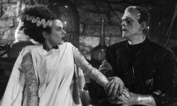 大卫·凯普:环球满意《科学怪人的新娘》剧本