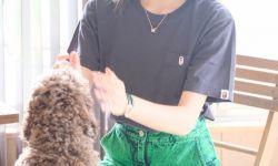 木村光希营业分享与爱犬玩耍照