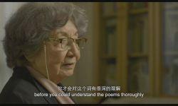 《掬水月在手》入围上影节,展现中国古典诗词之美