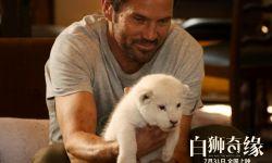 法国电影《白狮奇缘》定档7月31日
