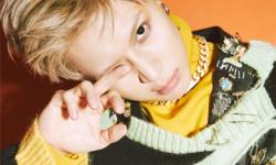 SHINee泰民新专辑发表将通过NAVER直播事先与粉丝沟通
