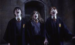 《哈利波特与魔法石》8月14日上映 传世经典绚丽重现