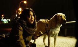 日本悬疑暴力强片《看不见的目击者》,翻拍韩国卖座警匪犯罪电影《盲证》