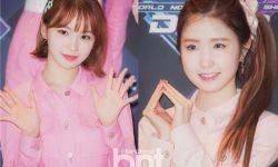IZ*ONE金采源&本田仁美确定出演KBS2综艺《便利餐厅》