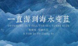 贾樟柯《一直游到海水变蓝》拿到电影公映许可证
