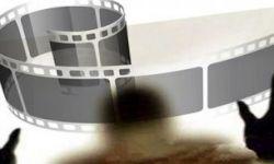 """""""盗版帝国""""覆灭记:400余部电影遭盗版,28名被告人获刑"""