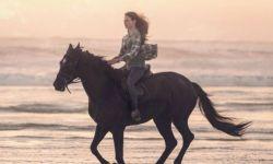 迪士尼新片《黑骏马》发预告  《星际穿越》女星麦肯吉·弗依主演