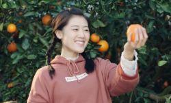 电影《橙妹儿的时代》定档11月20日 海归还乡带队扶贫