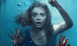 美国电影市场:独立电影业变得足够机智,可以渡过病毒危机