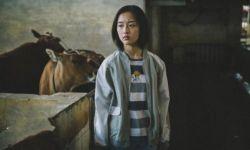 青春犯罪题材电影《少女佳禾》定档12月11日全国上映