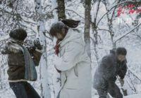 """电影《日光之下》在北京举办首映礼  被赞""""艺术性与商业感相得益彰"""""""