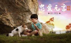 """电影《忠爱无言2》定档2021年3月  刚斩获金鸡奖""""最佳音乐""""提名"""