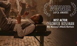 洛杉矶影评人协会奖将最佳男主角授予已故男星查德维克·博斯曼