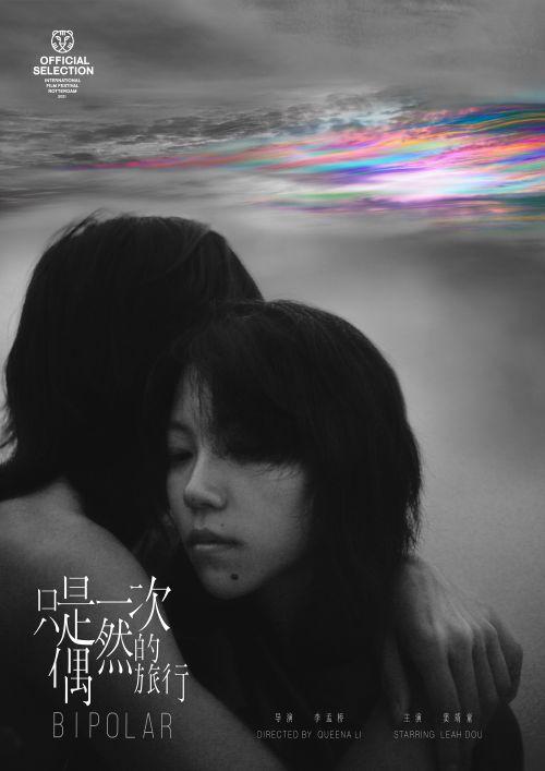 电影《只是一次偶然的旅行》首款海报