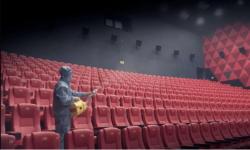 电影备案项目量三年连降,中国电影进入创作冷静期
