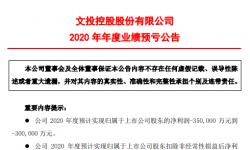 文投控股2020年预计亏损30亿-35亿同比由盈转亏 旗下电影院全部暂停营业