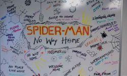 荷兰弟《蜘蛛侠3》副标题终于出炉   将于12月17日上映