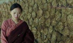 电影《圣山村迷局》:民族电影由文艺向悬疑的多元化开拓