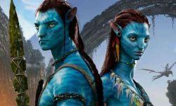 电影《阿凡达》重映3天票房破1.3亿,打了谁的脸?