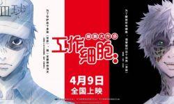 日本人气口碑动画电影《工作细胞:细胞大作战》国内定档