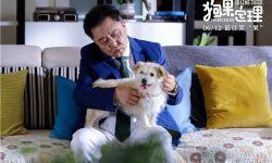 萌宠喜剧电影《狗果定理》定档  于谦最新剧照曝光