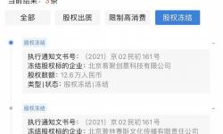 赵薇被冻结股权再增500万!实控28家公司