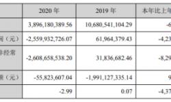 金一文化2020年亏损25.6亿 董秘孙玉萍薪酬78.93万元